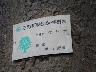 0217miyosisoba.JPG