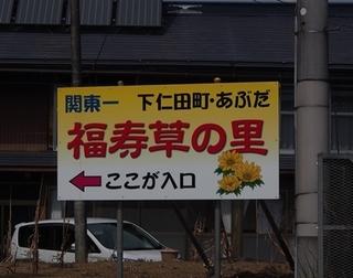 0309abuta3.JPG