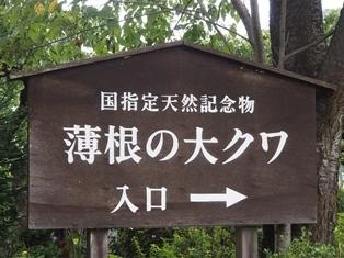 0927ookuwa5.jpg