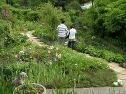 庭園内ー1